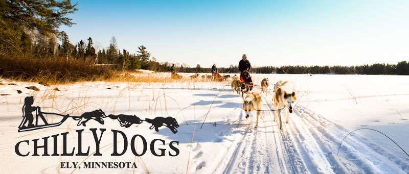 Welcome to Chilly Dogs Sled Dog Trips!